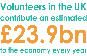 Volunteer Fact